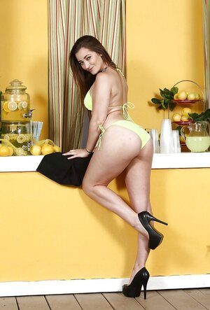 Lovely Dani Daniels reveals boobs and besides unshaved pussy to sell lemonade faster